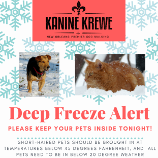 Kanine Krewe Cold Weather Alert