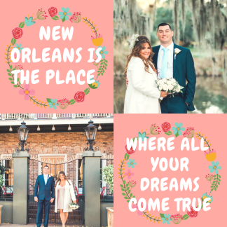 New Orleans dreams x