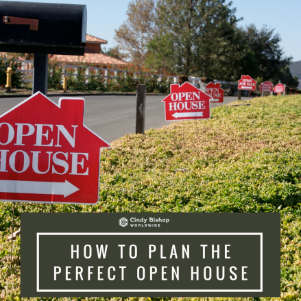 Perfect Open House
